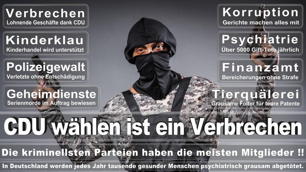Angela-Merkel (104)