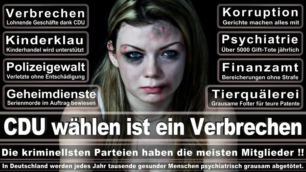 Angela-Merkel (146)