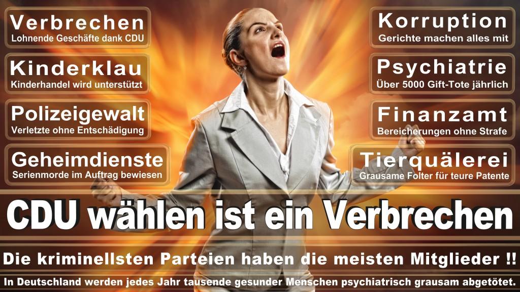 Angela-Merkel (162)