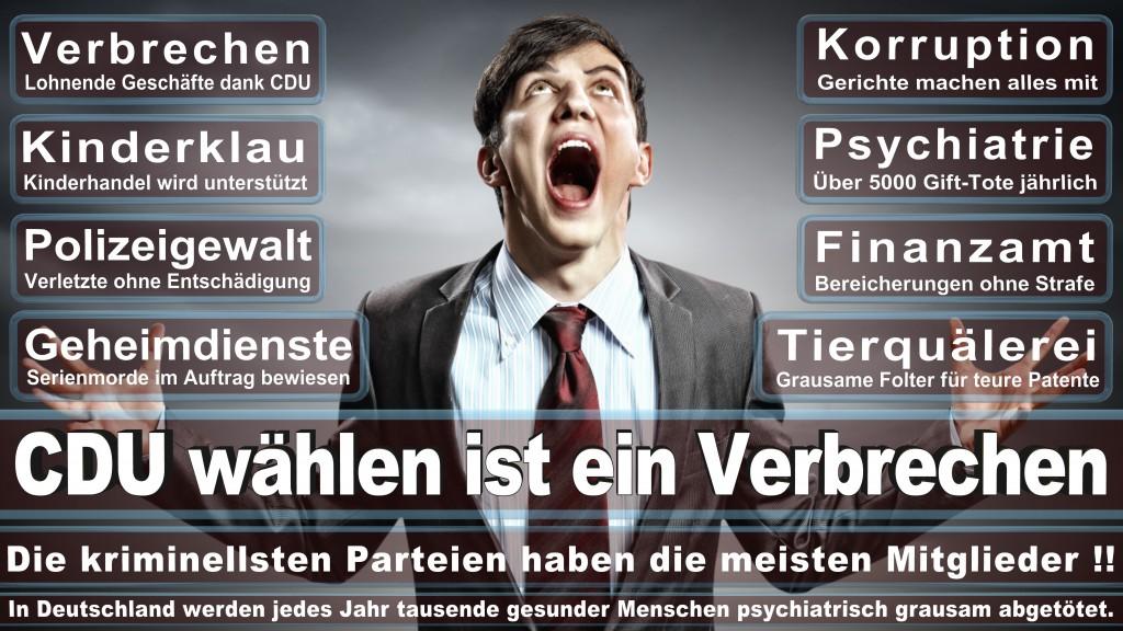 Angela-Merkel (163)