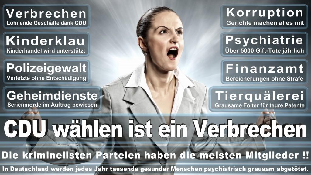 Angela-Merkel (164)