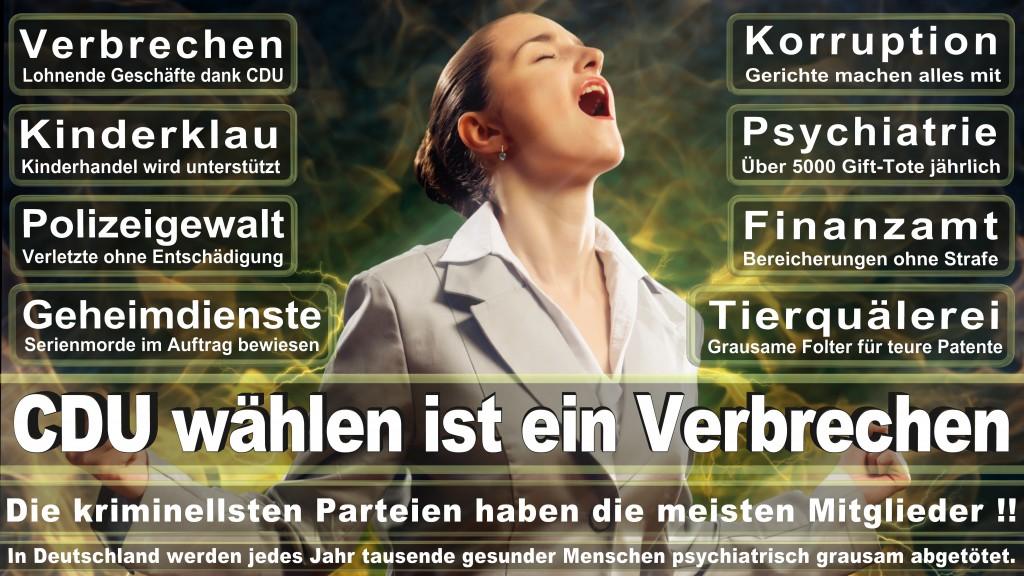 Angela-Merkel (165)