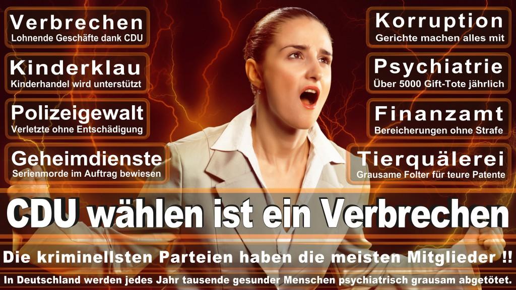 Angela-Merkel (169)