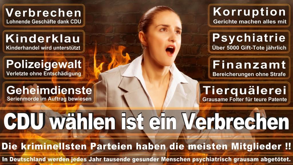 Angela-Merkel (175)