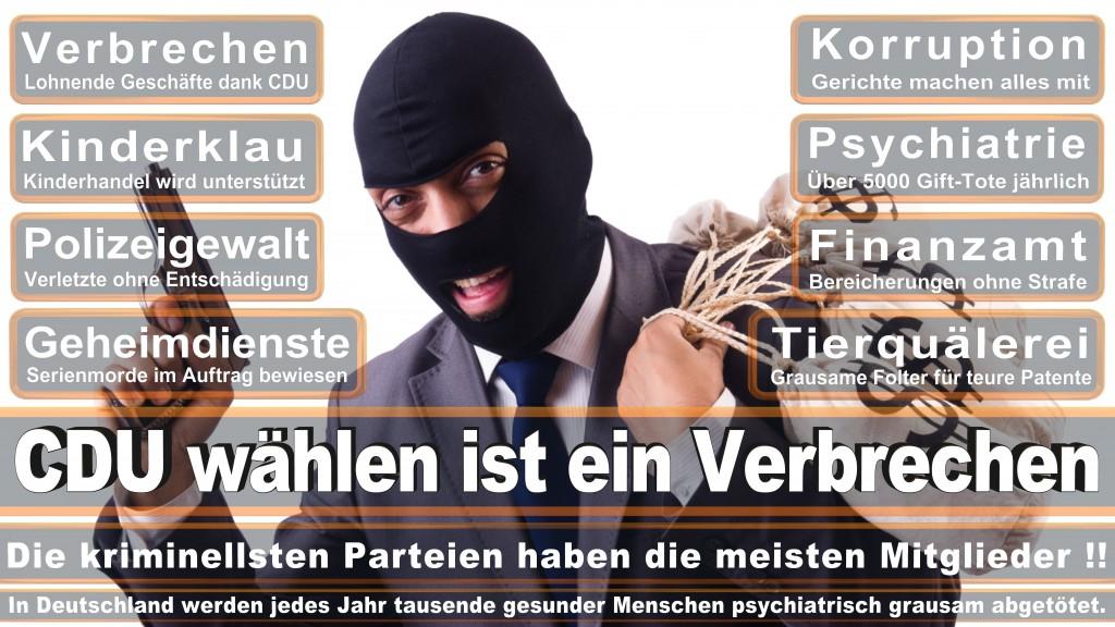 Angela-Merkel (190)