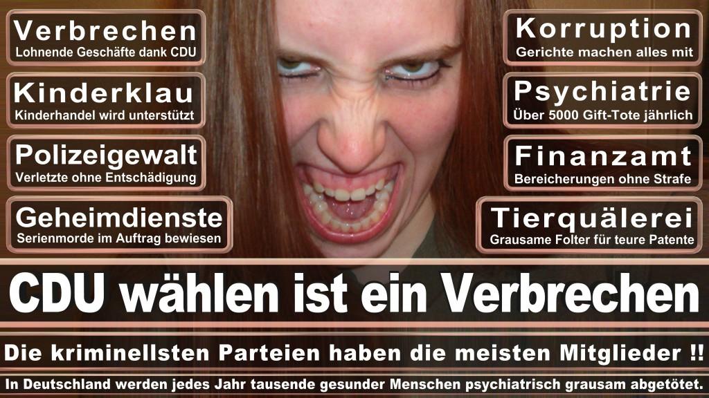 Angela-Merkel (21)