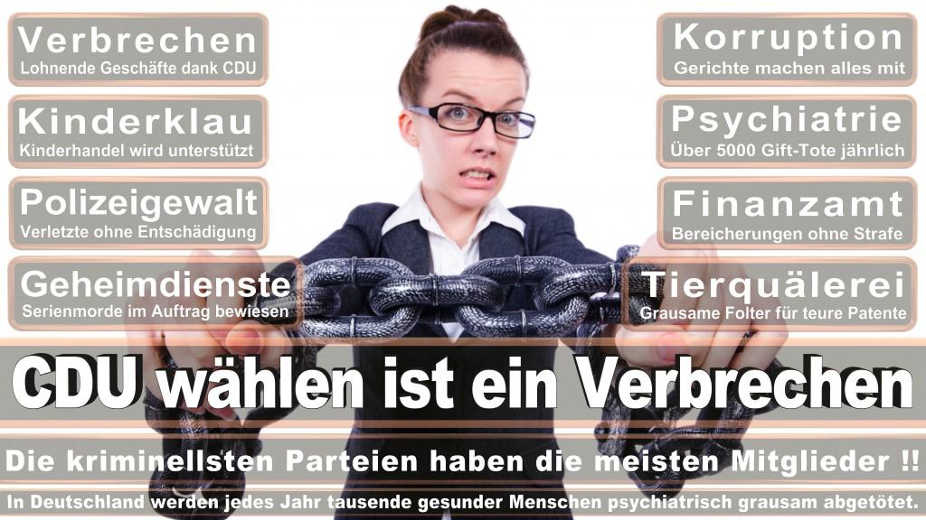 Angela-Merkel (211)
