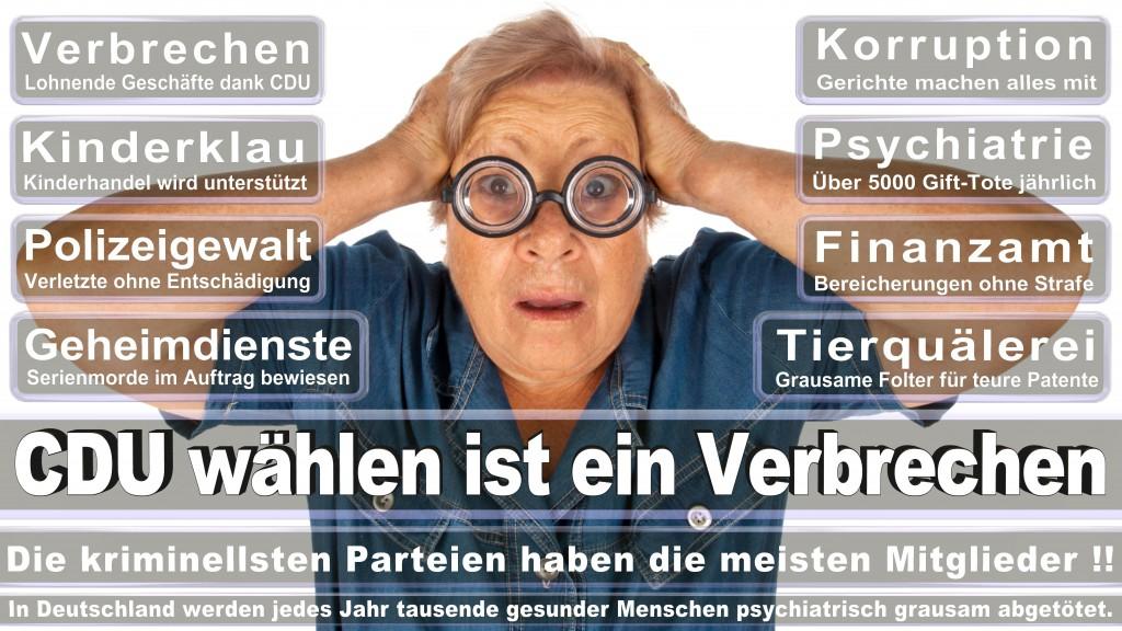 Angela-Merkel (222)