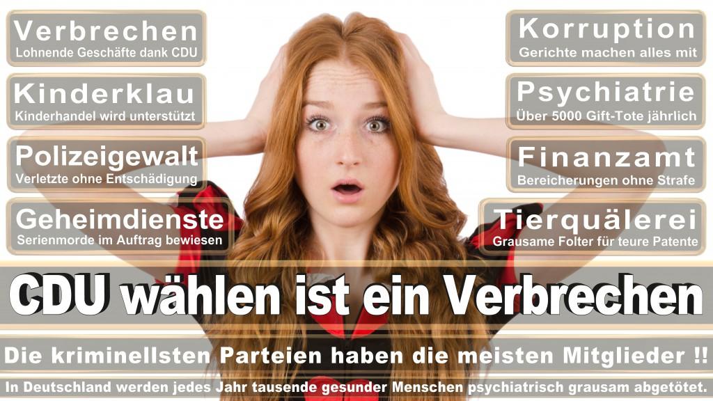 Angela-Merkel (223)