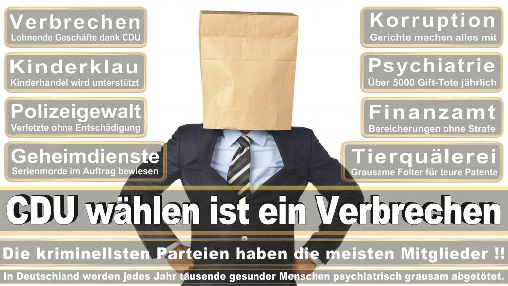 Angela-Merkel (227)