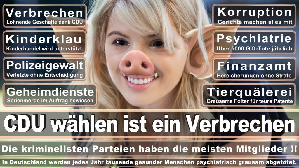 Angela-Merkel (23)