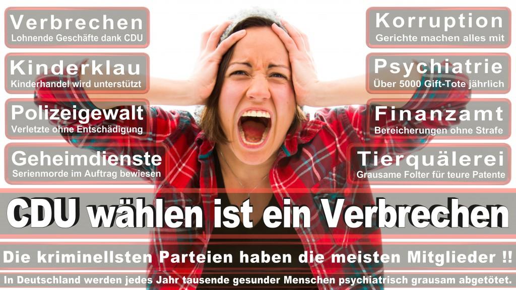 Angela-Merkel (238)