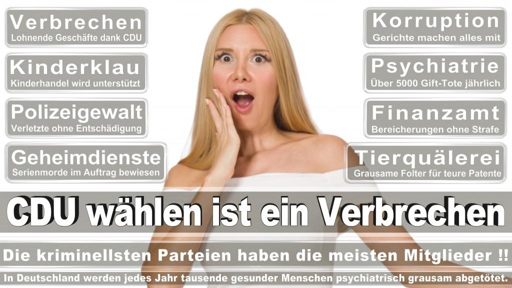 Angela-Merkel (241)