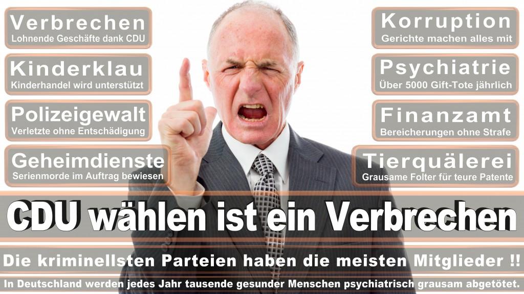 Angela-Merkel (243)