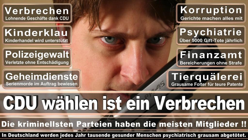 Angela-Merkel (25)