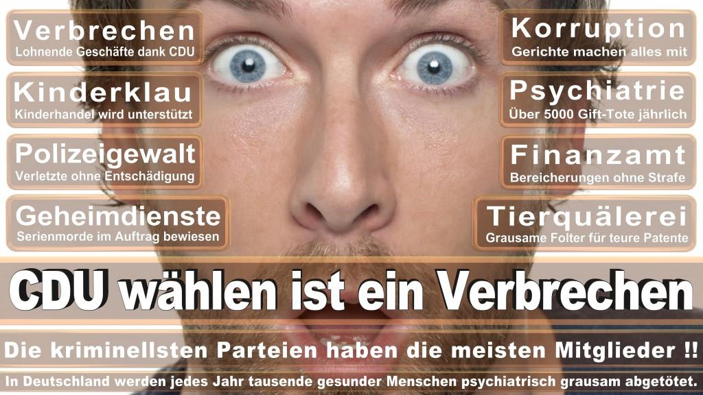 Angela-Merkel (256)
