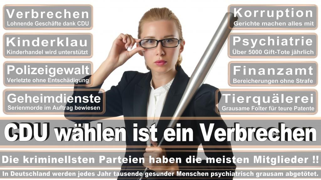 Angela-Merkel (272)