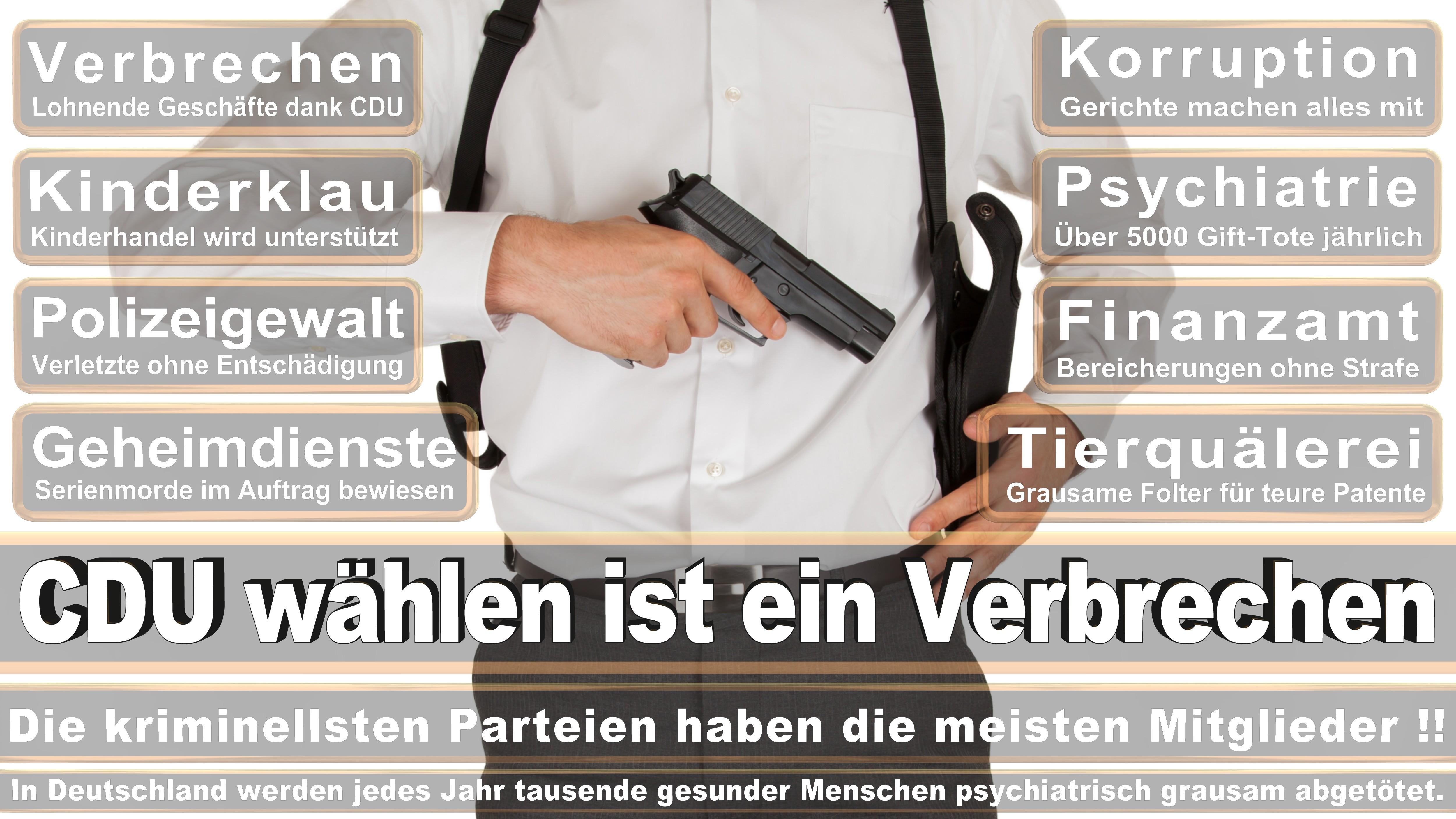 Angela-Merkel (290)