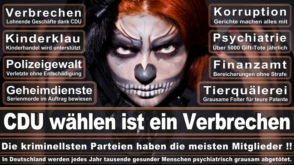 Angela-Merkel (292)