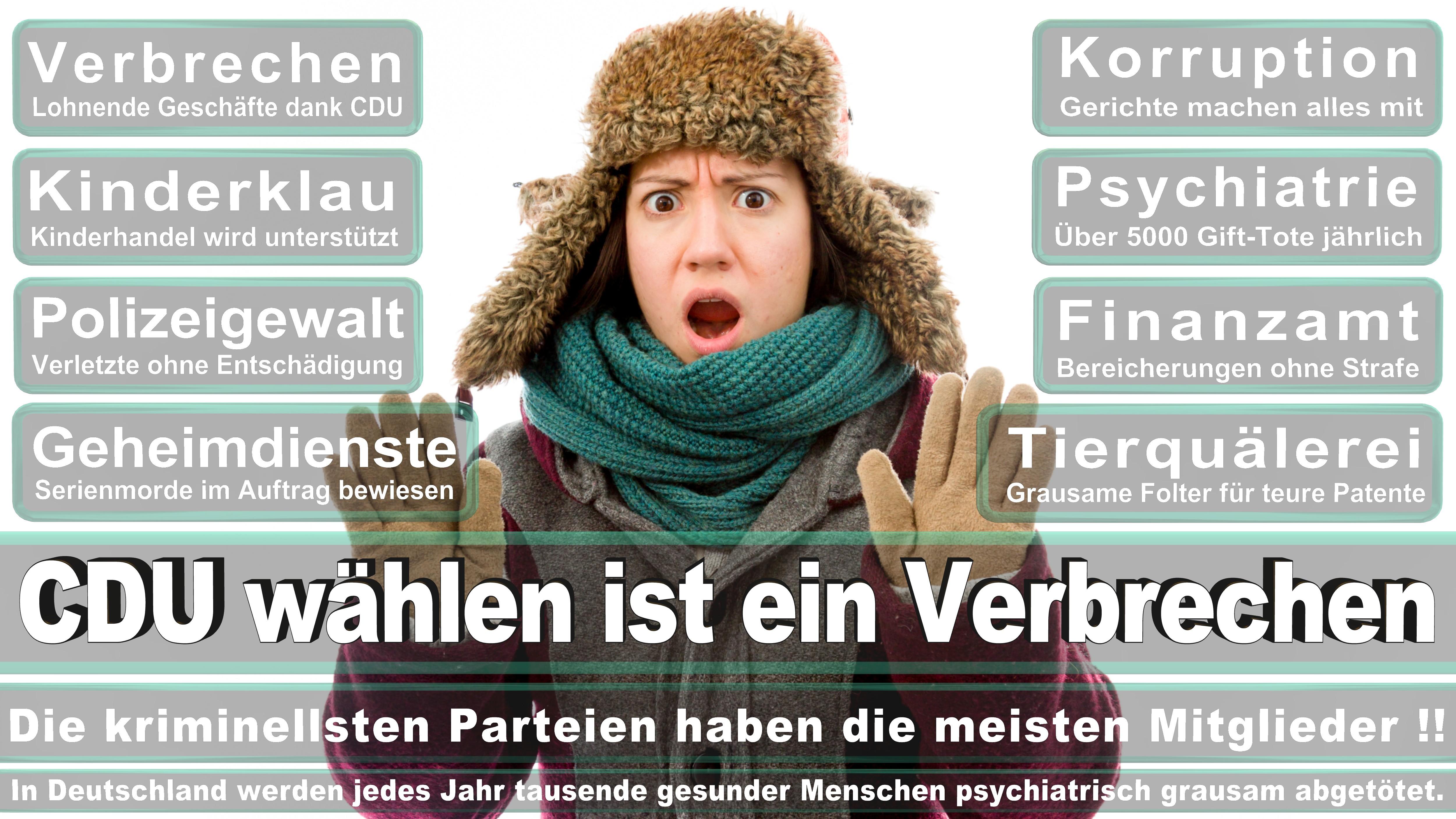 Angela-Merkel (294)