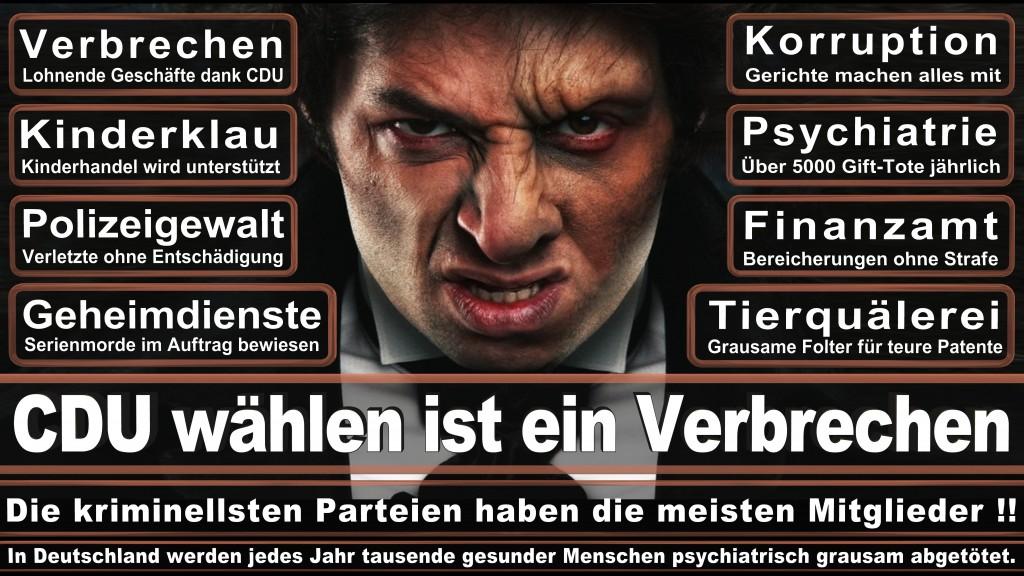 Angela-Merkel (30)
