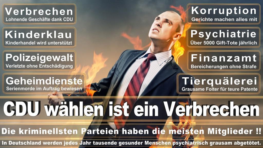 Angela-Merkel (305)