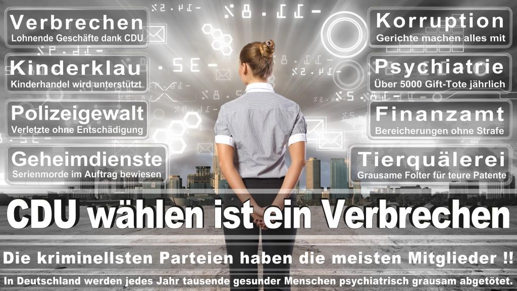 Angela-Merkel (306)