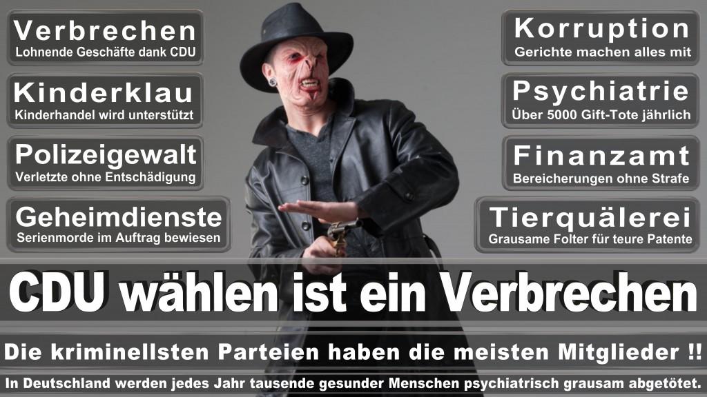 Angela-Merkel (31)
