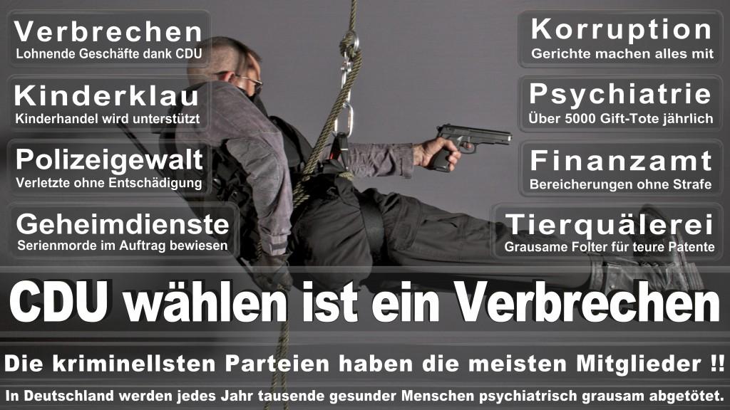 Angela-Merkel (313)