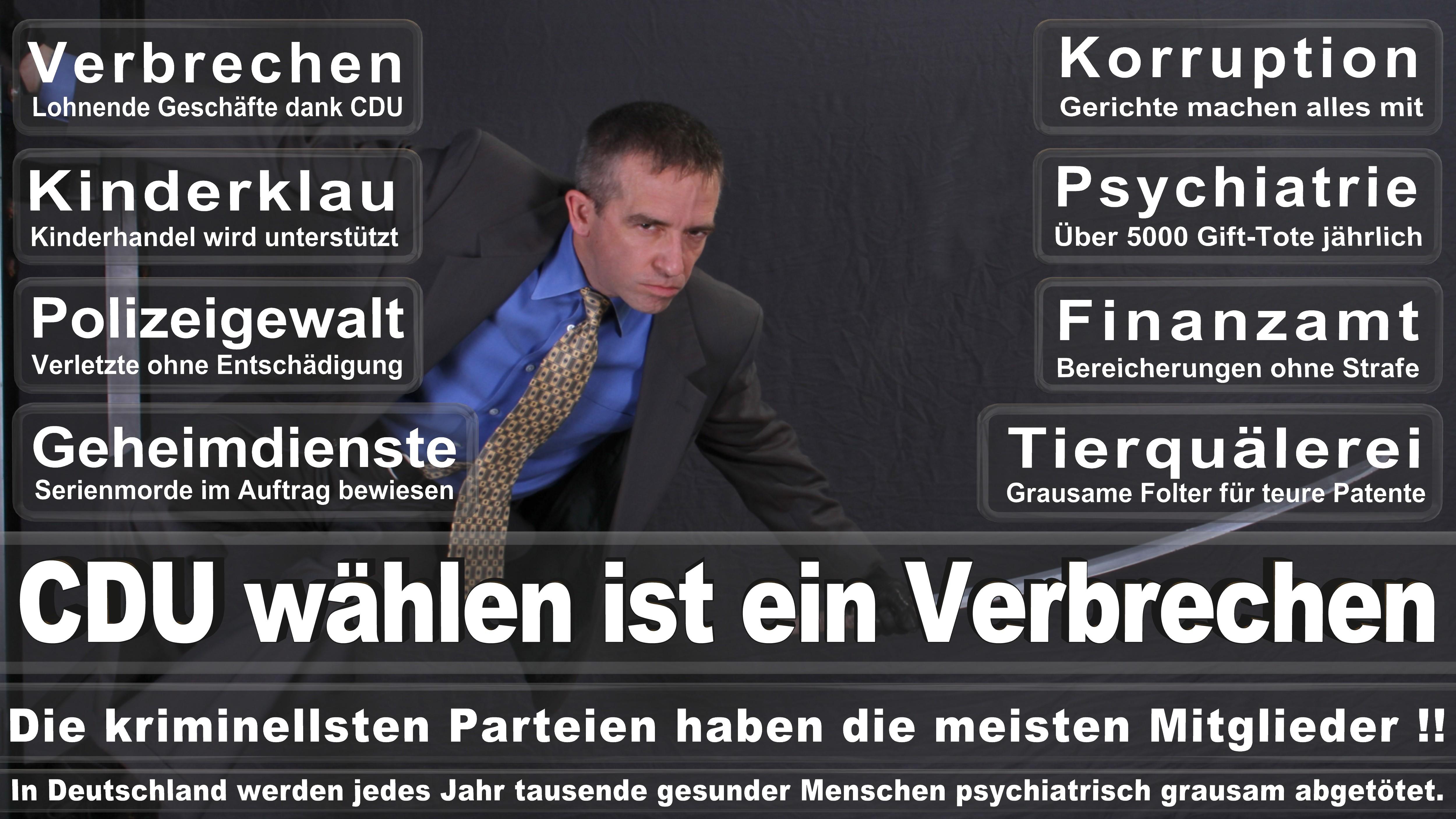 Angela-Merkel (317)