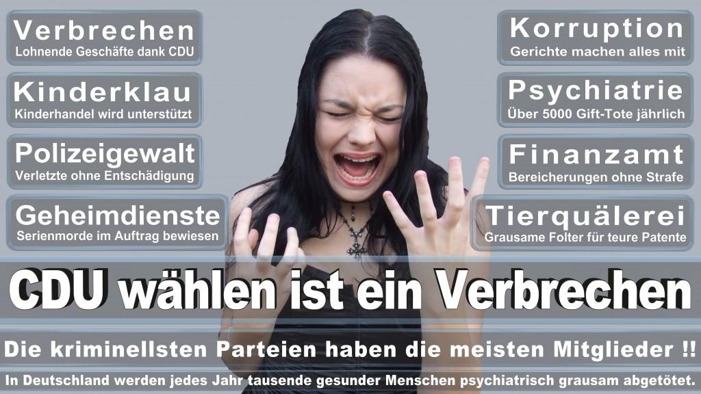 Angela-Merkel (330)