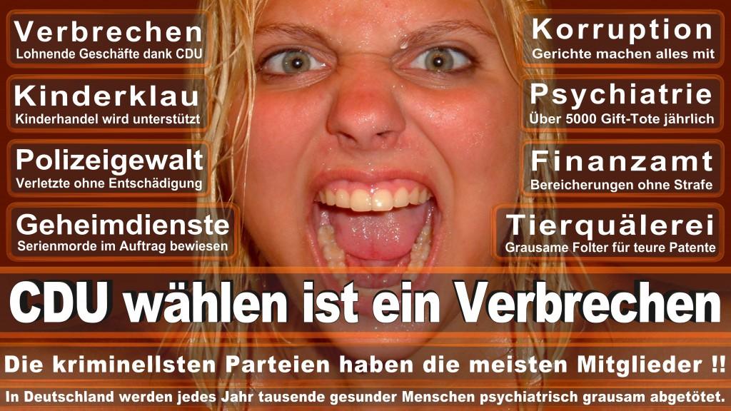 Angela-Merkel (334)