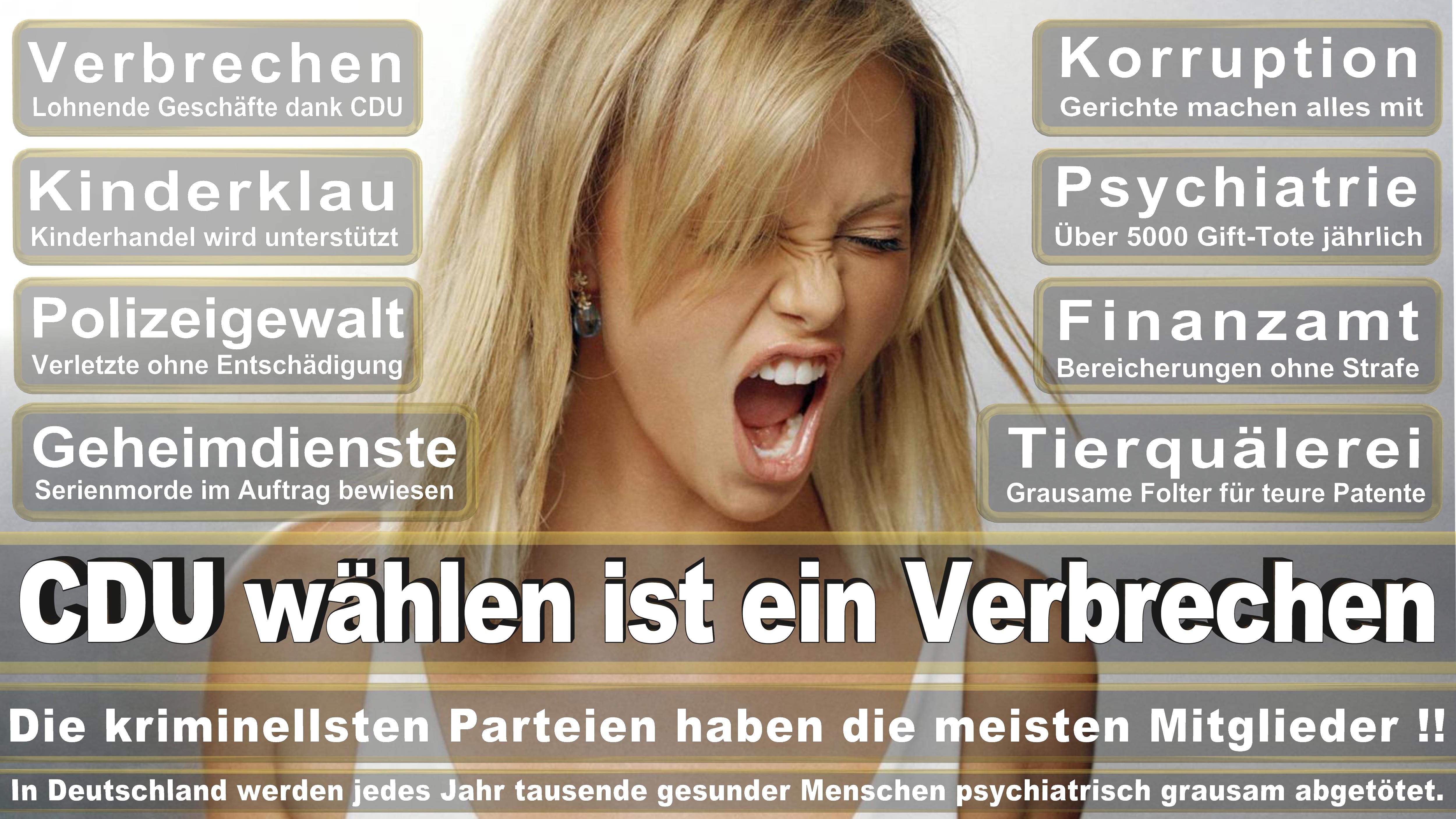 Angela-Merkel (335)