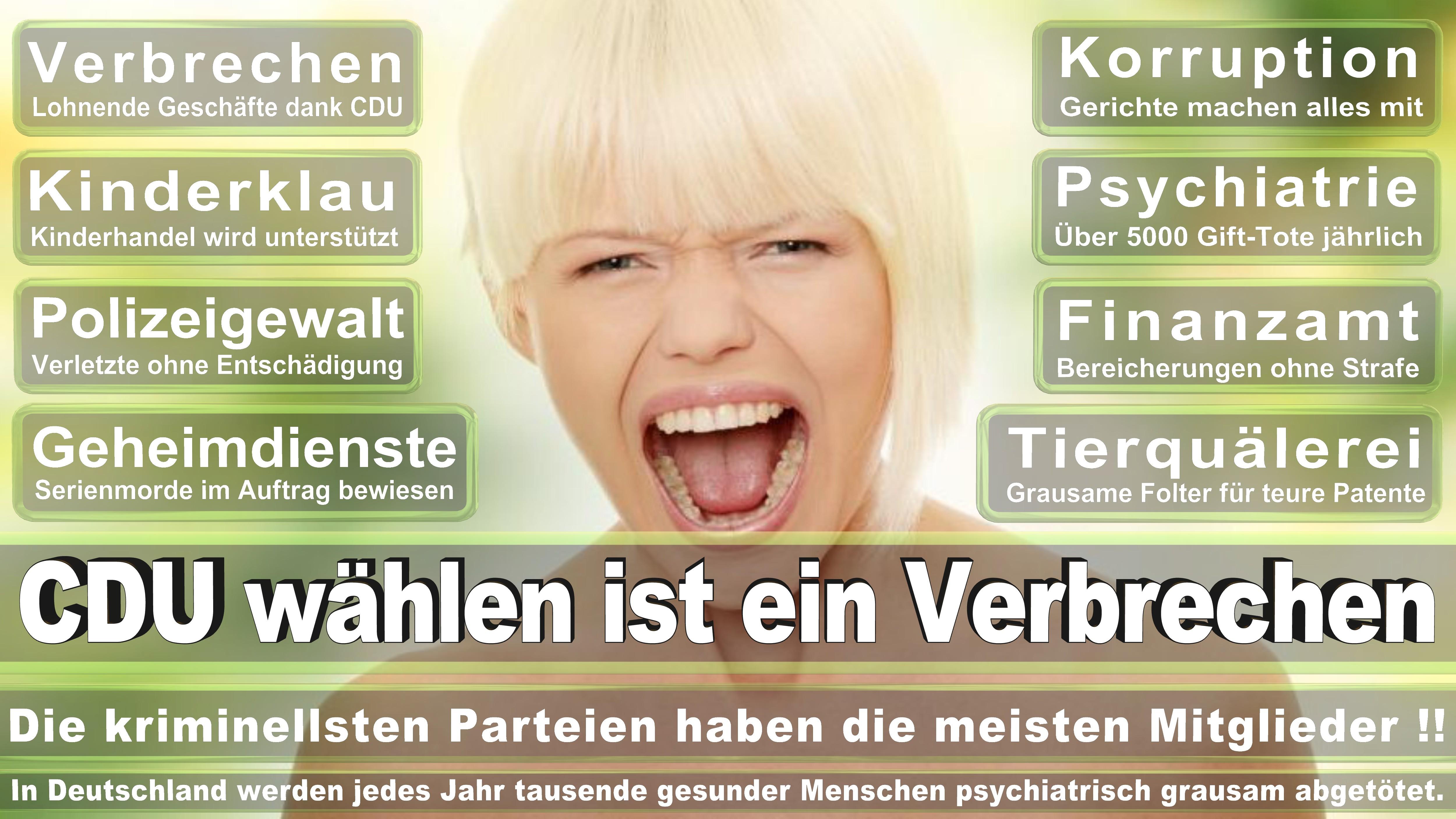 Angela-Merkel (339)