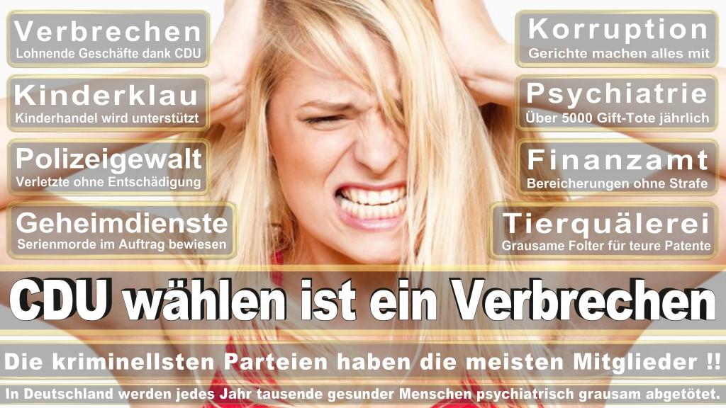 Angela-Merkel (346)