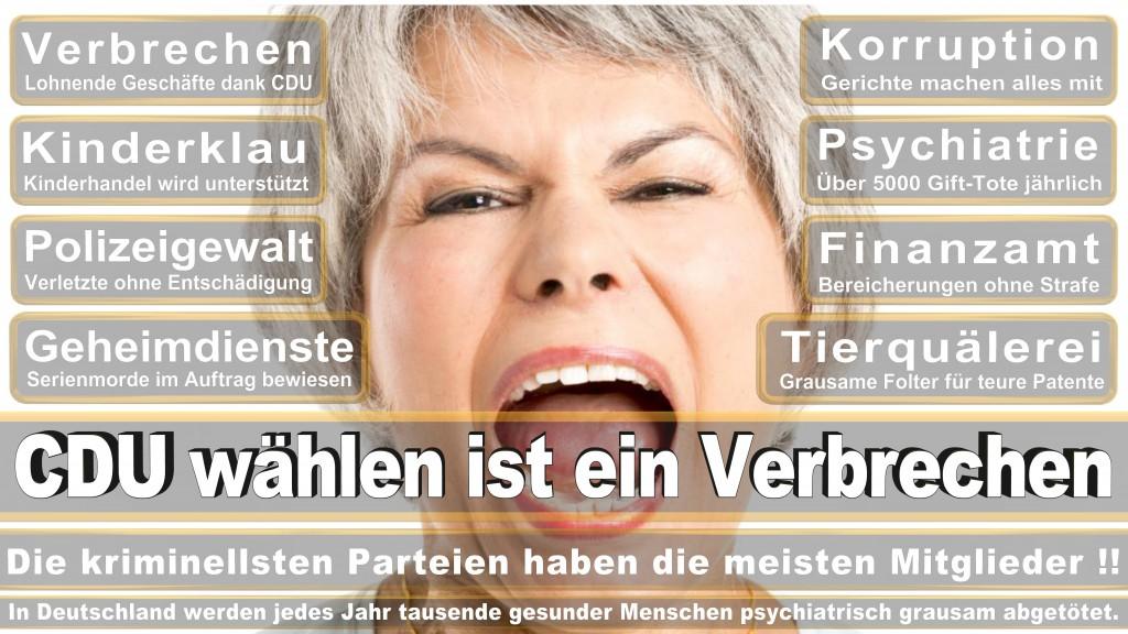 Angela-Merkel (368)