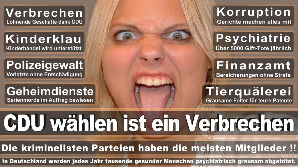 Angela-Merkel (37) Angela-Merkel-CDU Christlich Demokratische Union Deutschlands CDU 459.878 Sozialdemokratische Partei Deutschlands SPD Bündnis 90/Die Grünen GRÜNE Die Linke DIE LINKE Christlich-Soziale Union in Bayern CSU Freie Demokratische Partei FDP Piratenpartei Deutschland PIRATEN Alternative für Deutschland AfD Freie Wähler FREIE WÄHLER Nationaldemokratische Partei Deutschlands NPD Allianz für Fortschritt und Aufbruch Alfa Südschleswigscher Wählerverband SSW Brandenburger Vereinigte Bürgerbewegungen/Freie Wähler BVB / FREIE WÄHLER Bürger in Wut BIW Partei für Arbeit, Rechtsstaat, Tierschutz, Elitenförderung und basisdemokratische Initiative Die PARTEI Ökologisch-Demokratische Partei ÖDP Familien-Partei Deutschlands FAMILIE