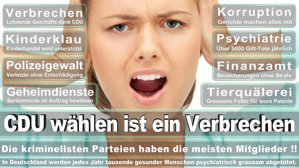 Angela-Merkel (371)