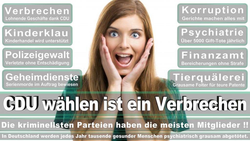 Angela-Merkel (377)