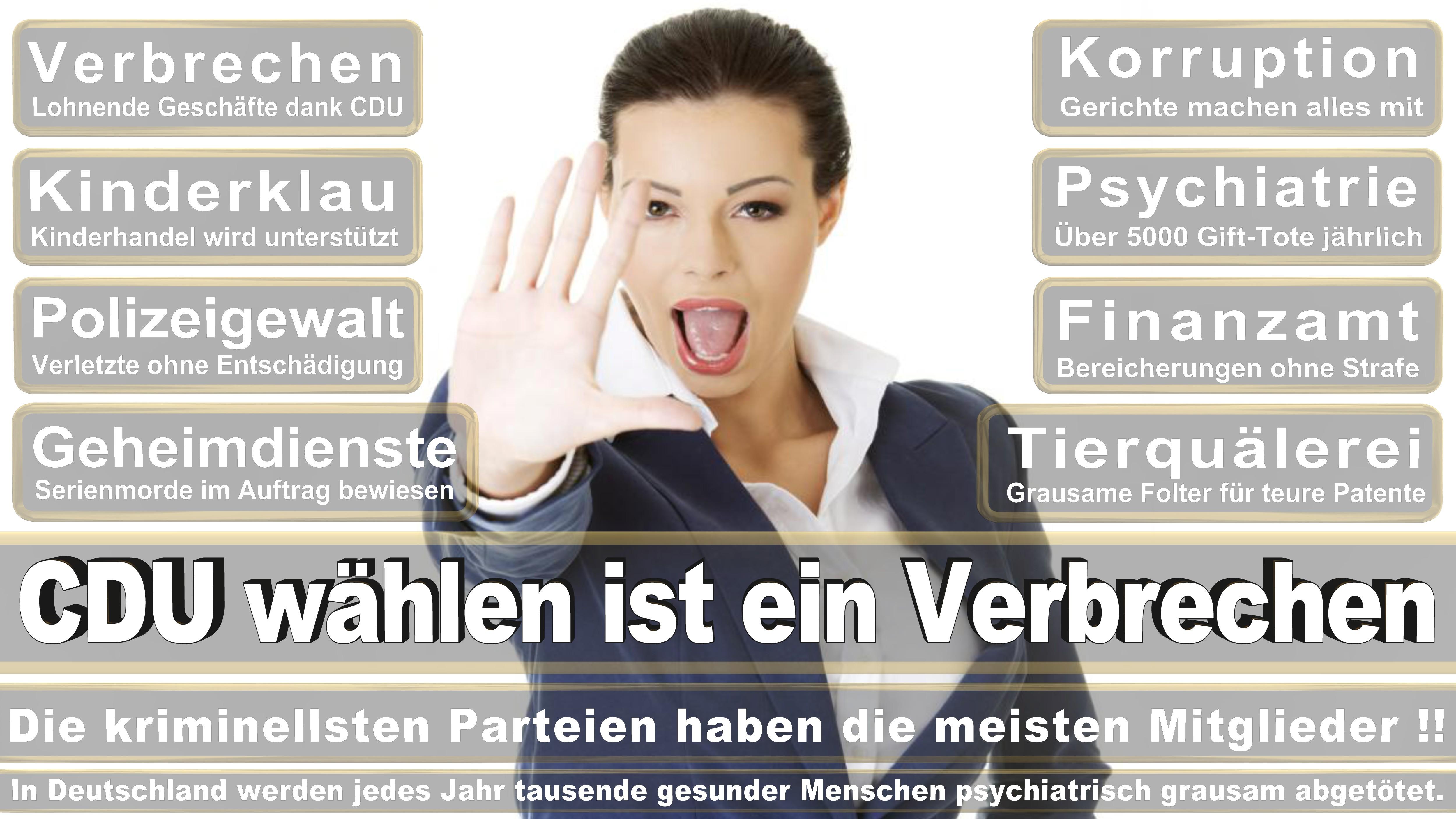 Angela-Merkel (381)