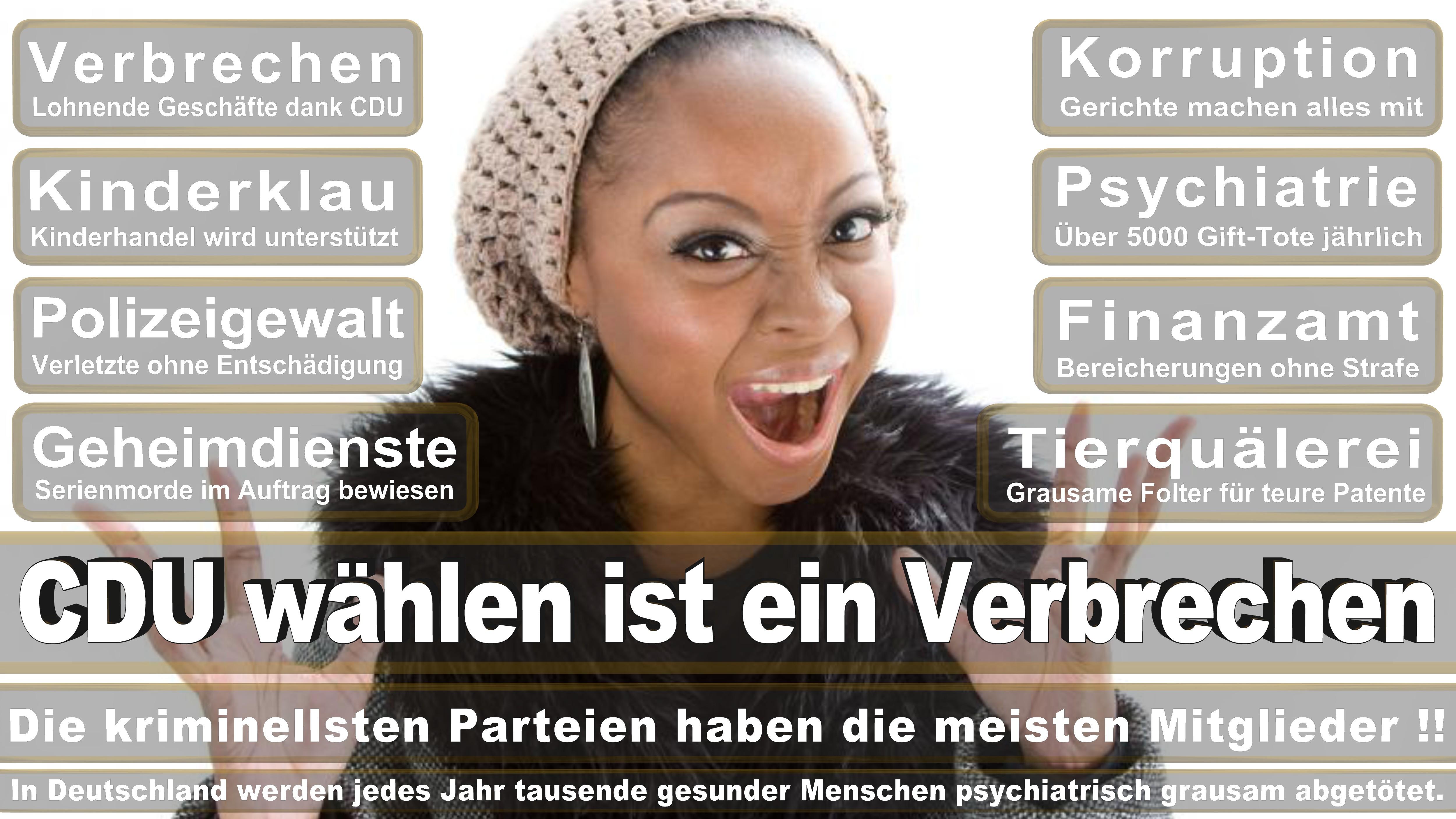 Angela-Merkel (384)