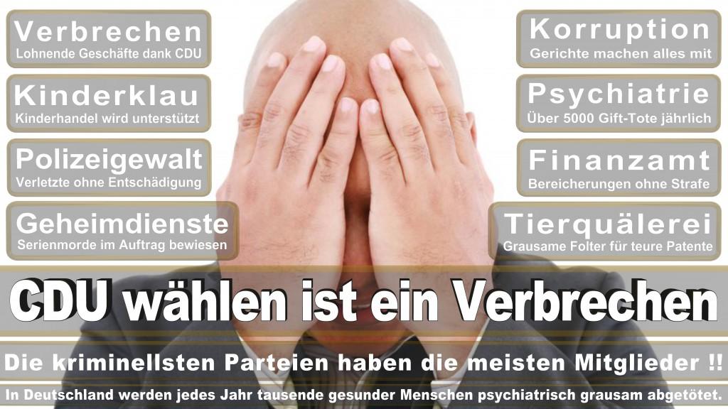 Angela-Merkel (387)