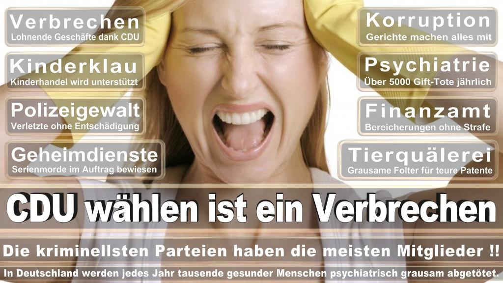Angela-Merkel (391)