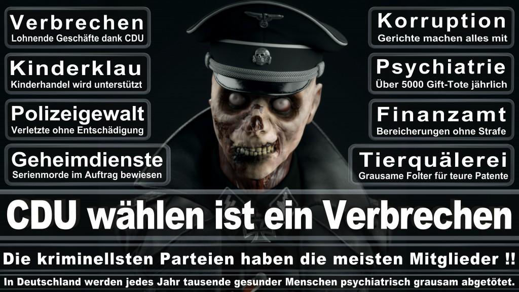 Angela-Merkel (43)