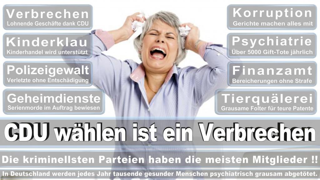 Angela-Merkel (440)