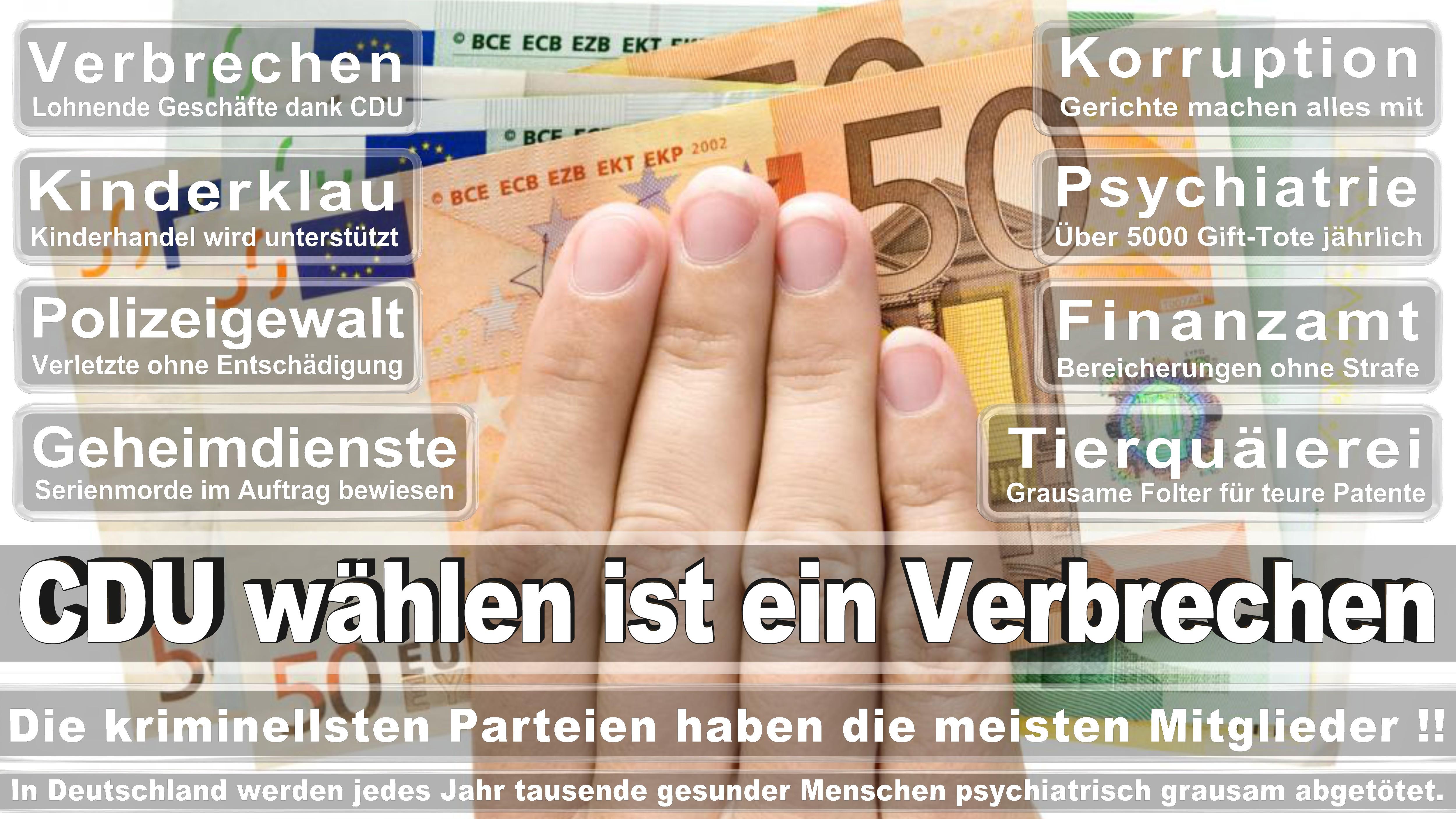 Angela-Merkel (490)