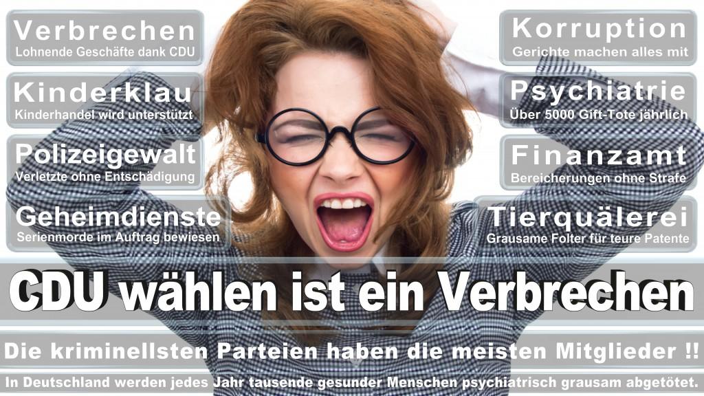 Angela-Merkel (504)