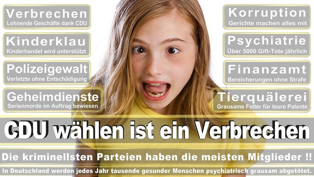 Angela-Merkel (511)