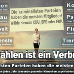 Angela-Merkel (523)