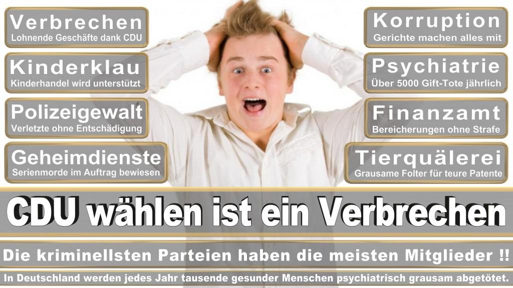 Angela-Merkel (527)
